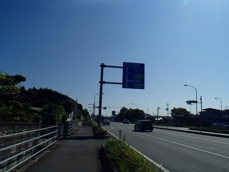 P8080305.jpg