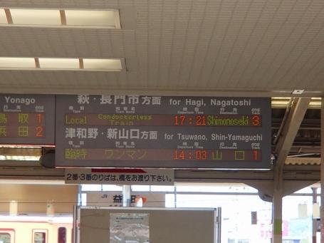 P8080331.jpg