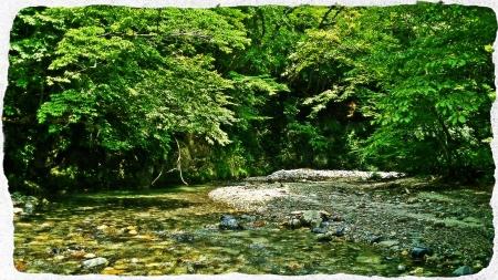 2015 鬼怒川水系6&那珂川水系8 (3)
