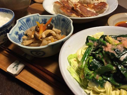 Jan16_焼き餃子