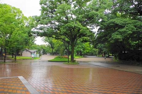 上野公園a