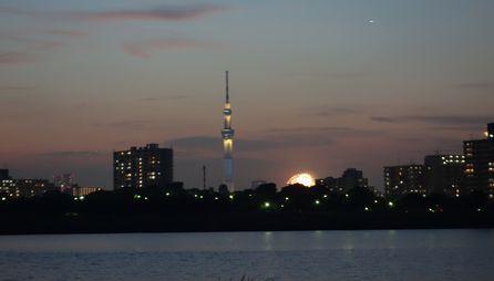 荒川越しに隅田川の花火を見る
