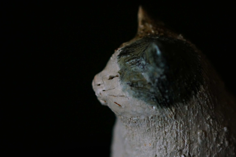 s-cat3