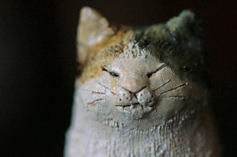 s-cat4