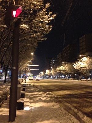 大雪のお正月