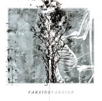tarsiustarsier_CD.jpg