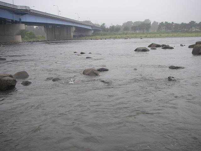 P8140359 大渡橋.jpg