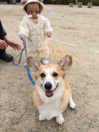 snh (1)
