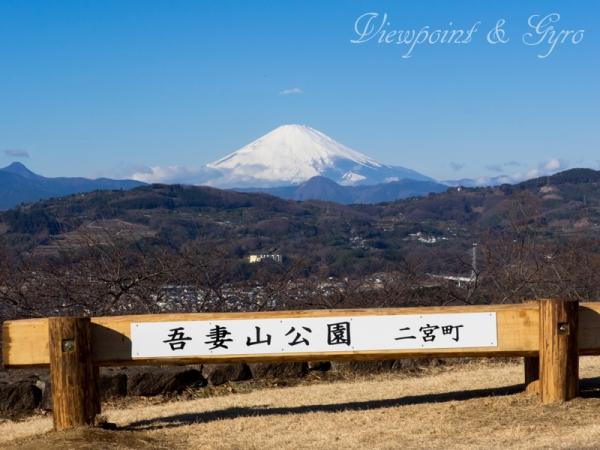 吾妻山公園 A
