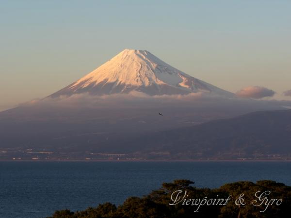 戸田海岸 富士山 I