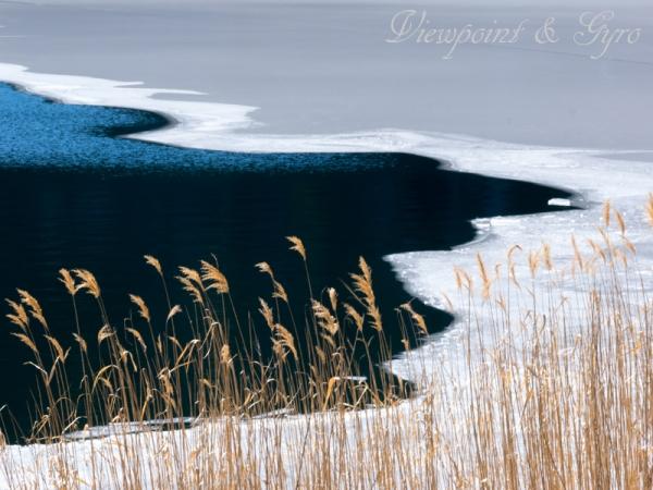 河口湖 湖畔の雪景色