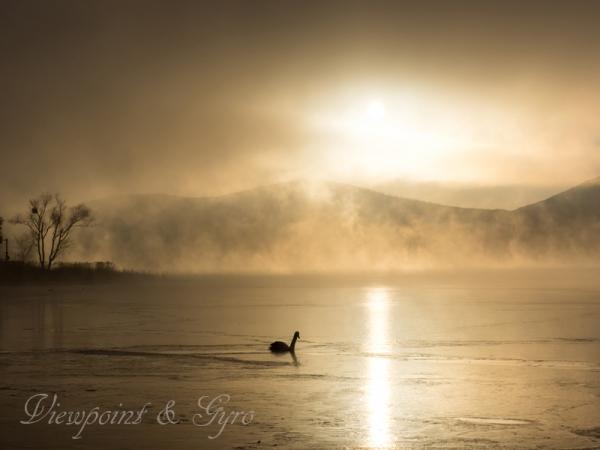 山中湖の朝靄 E