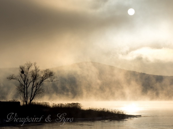 山中湖の朝靄 F