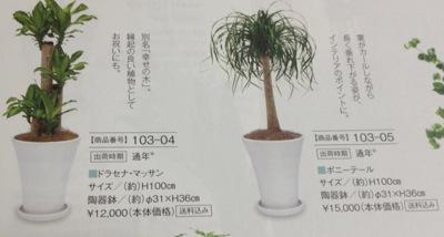 [7590]タカショー 植物カタログ