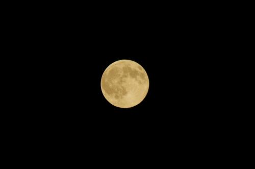 MoonIMGP4064.jpg