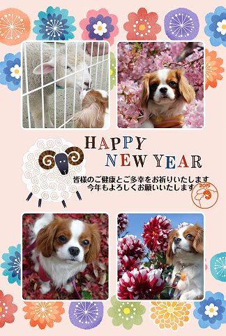 2015-2_2015010100025913c.jpg