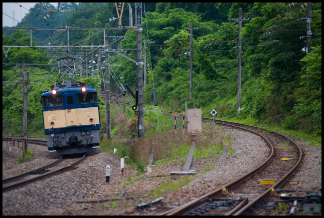 DSC7563.jpg