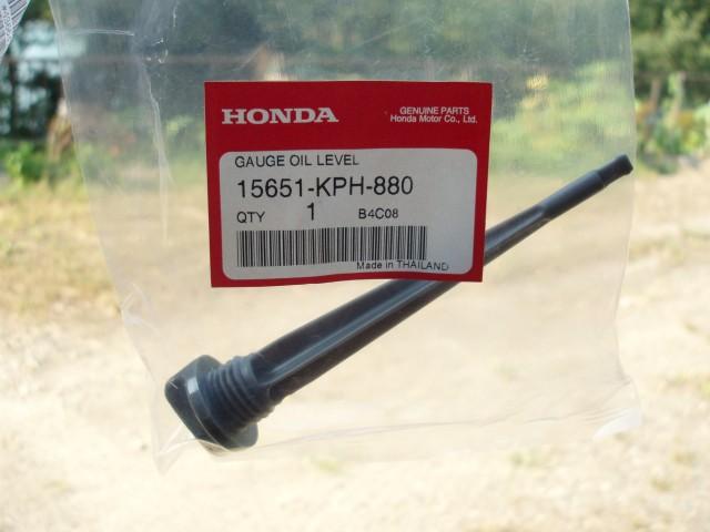P8010001 (Custom)