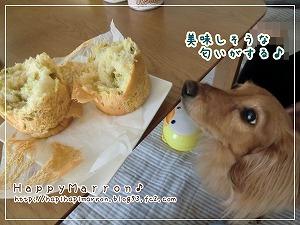 アキモトのパン試食2