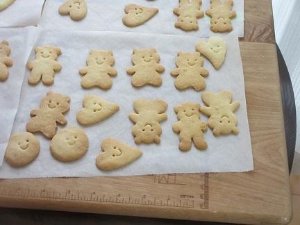 クッキーくま
