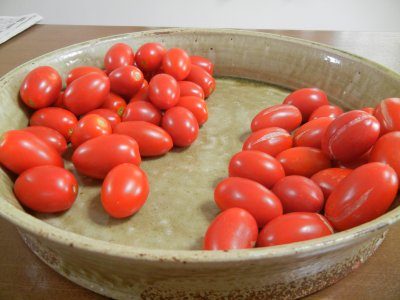 雨上がりのミニトマトの収穫
