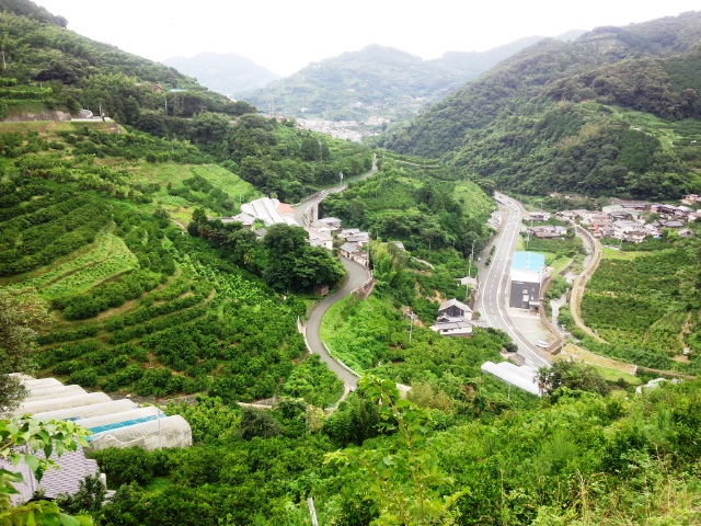 20150718_⑤瞽女峠への登り