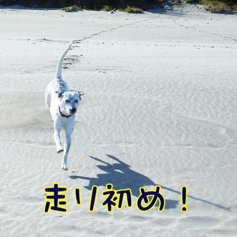 blog_0103_142823(1).jpg