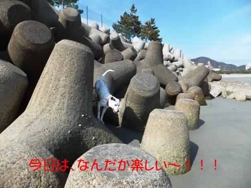 blog_0221_124551.jpg
