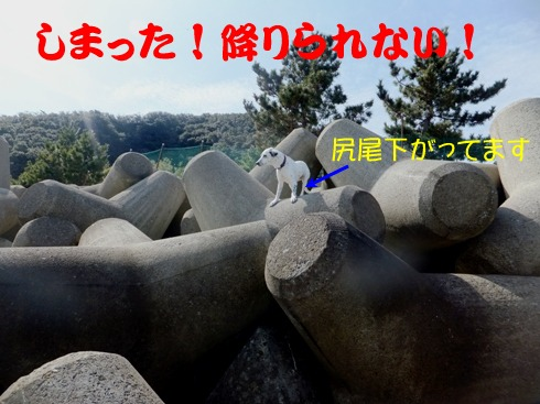 blog_0221_125205.jpg