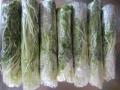 みず菜冷凍