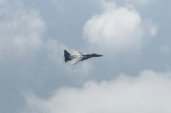 Hyakuri AB_F-15J_414