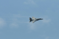 Hyakuri AB_F-15J_416