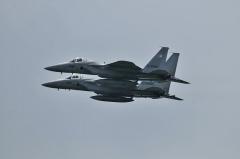 Hyakuri AB_F-15J_419