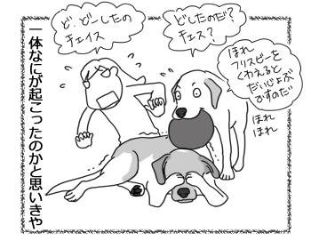 羊の国のラブラドール絵日記シニア!!「新しいアイテム」3
