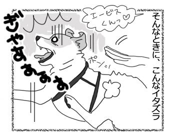 羊の国のラブラドール絵日記シニア!!「エビスの苦手」3