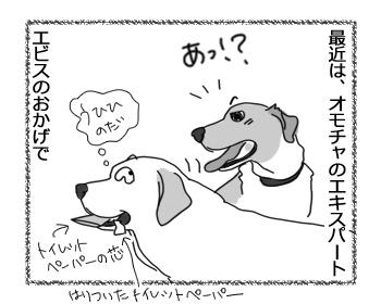 羊の国のラブラドール絵日記シニア!!「オモチャ?への目覚め」3