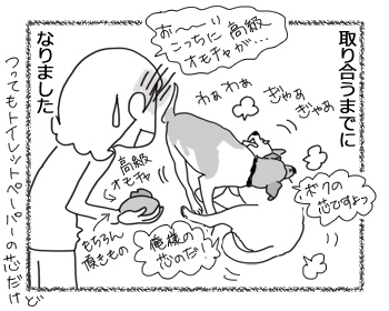 羊の国のラブラドール絵日記シニア!!「オモチャ?への目覚め」4