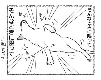 羊の国のラブラドール絵日記シニア!!「天才?エビスくん」2