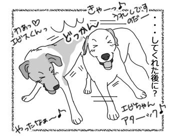 羊の国のラブラドール絵日記シニア!!「男子の世界」2
