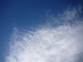 久しぶりに雲