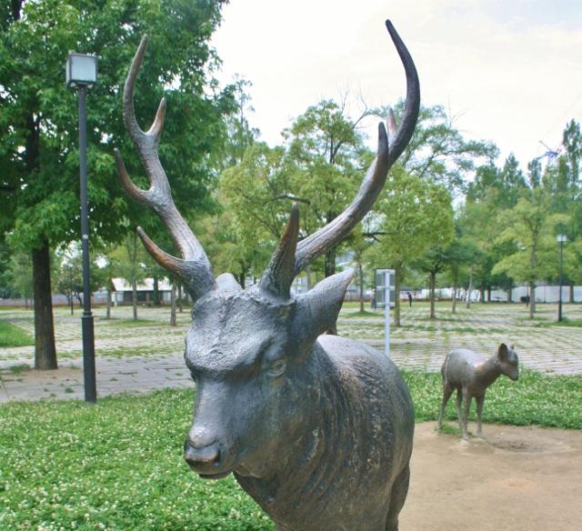 IMG_8647 さお鹿の(640x584)