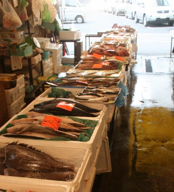 IMG_8925 朝市の魚(583x640)