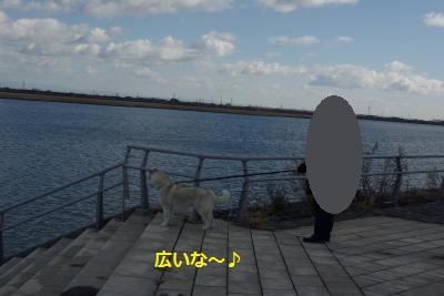 IMGP7292_convert_20150117222933.jpg