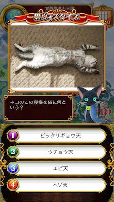 ネコのこの寝姿を俗に何という?