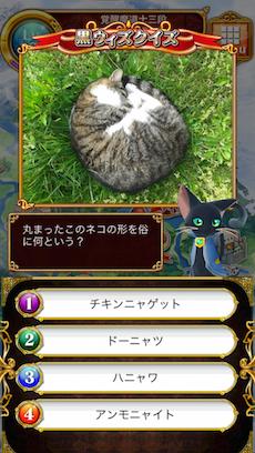 丸まったこのネコの形を俗に何という?