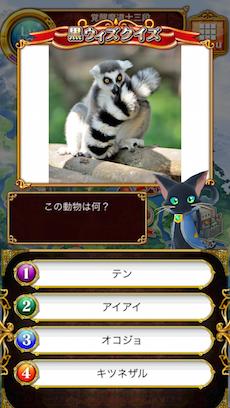 この動物は何?答え:キツネザル