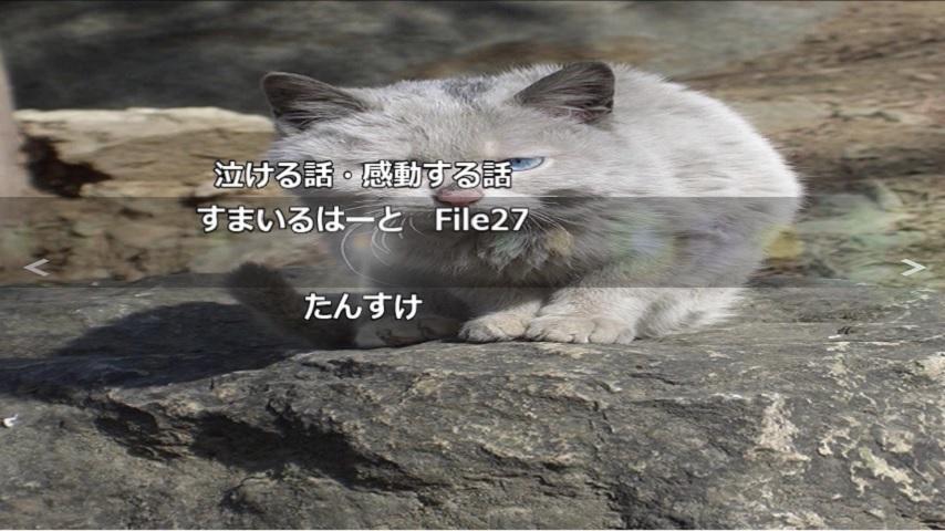 gazou_sam27.jpg