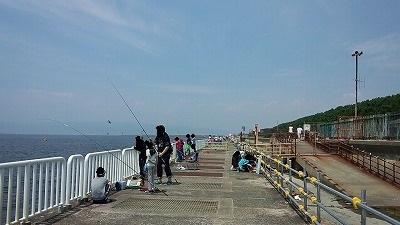 南港魚つり園20158月