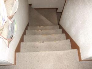 既存のカーペット