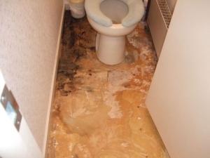 トイレの既存の床